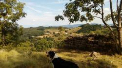 vue depuis l'oppidum Chalencon, Ardèche.jpg