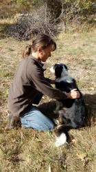 Shiatsu chien Ardèche