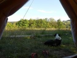 Vue depuis tente saharienne